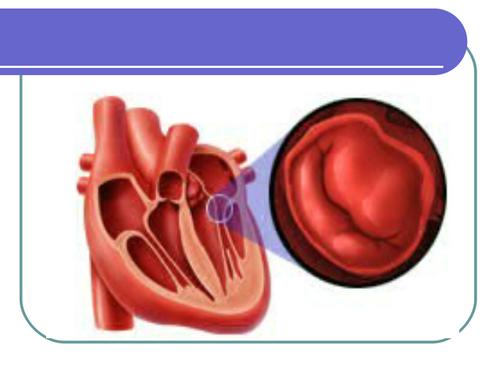 Perawatan Katup Aorta Bikuspid hasil yang