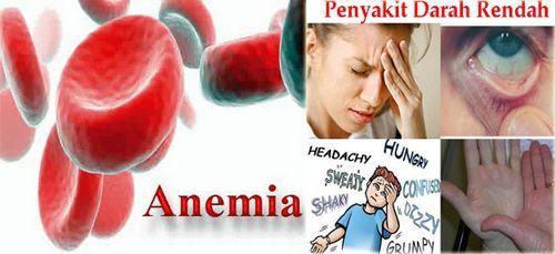 Tekanan Darah Rata-Rata Orang Normal penyakit jantung dan stroke